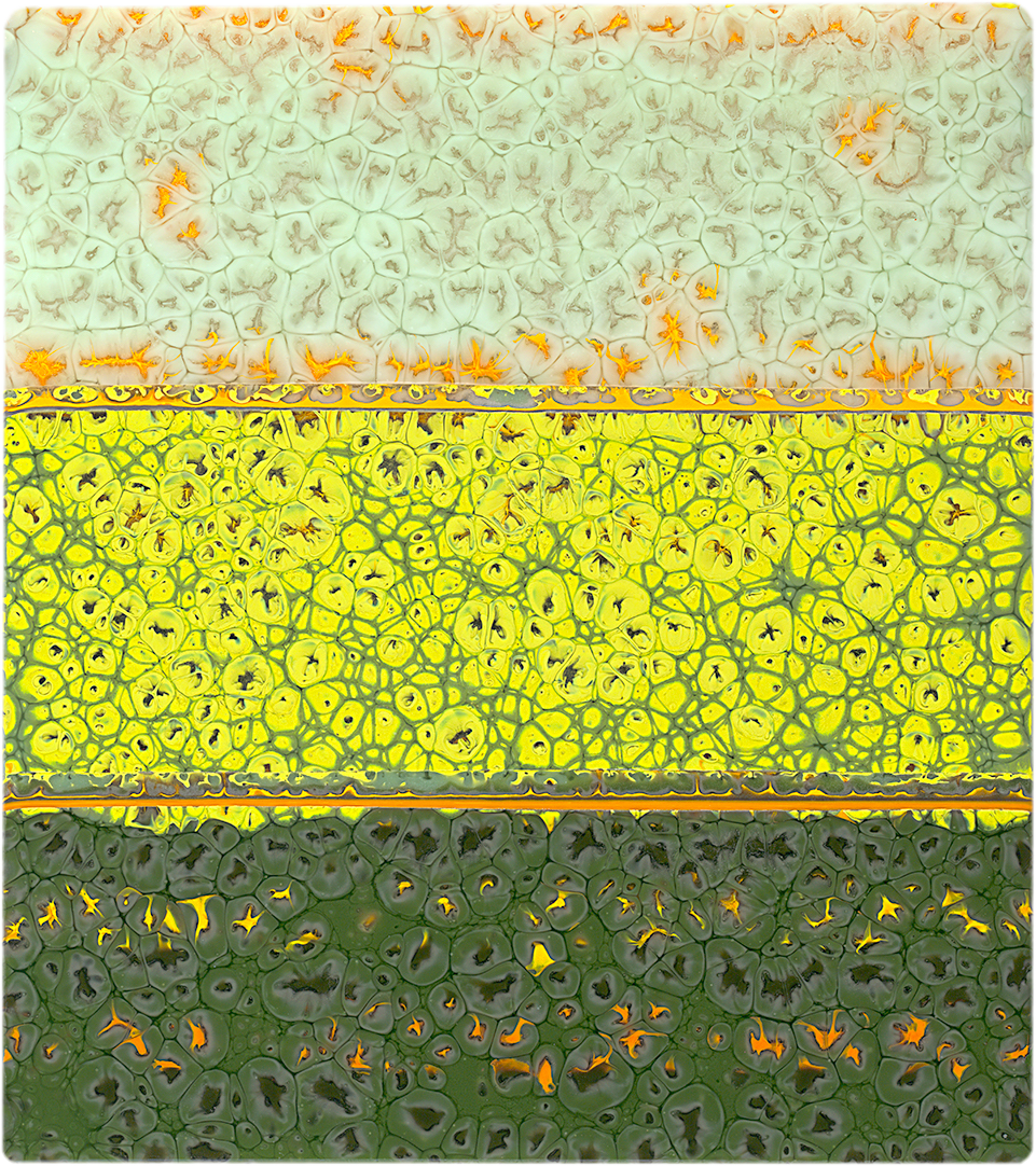 Autumn Fields 15-75 x 17-5